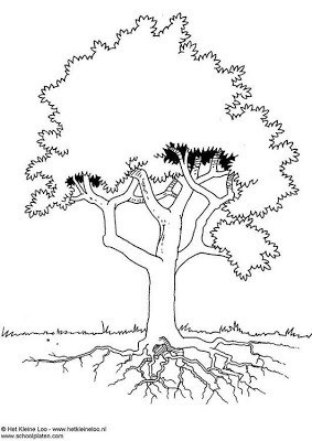 arvore - Atividades para o Dia da árvore