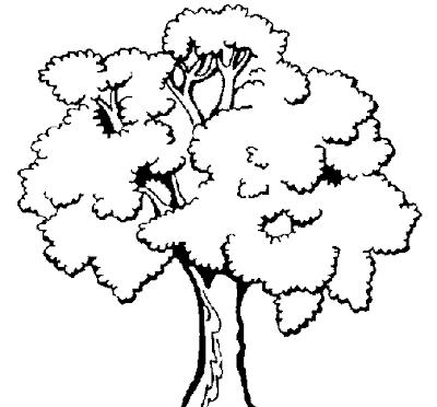 e69f047dfc87426264e9ebe5d017688a - Atividades para o Dia da árvore